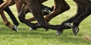hotels for dublin horse show RDS